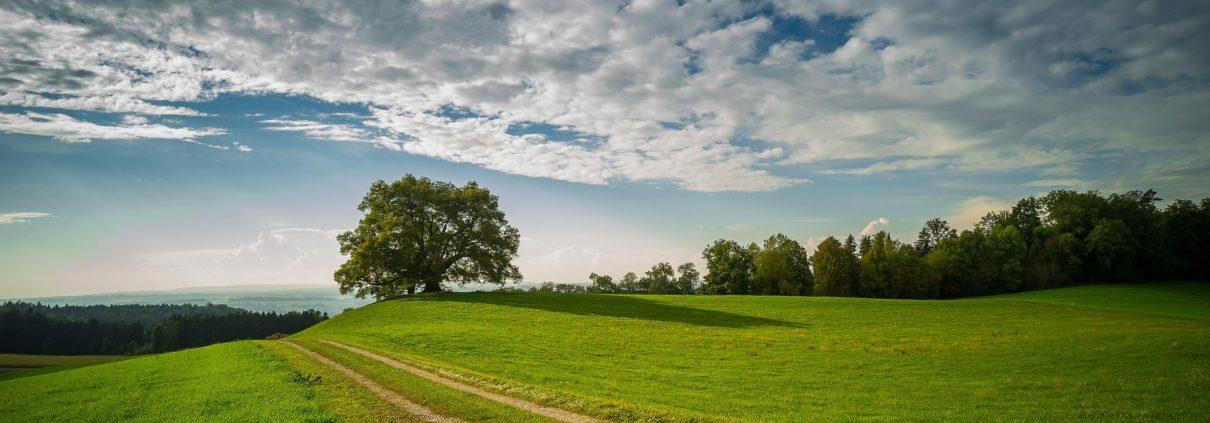 Anwander, Nachhaltigkeit, Allgäu, Ökostrom AÜW